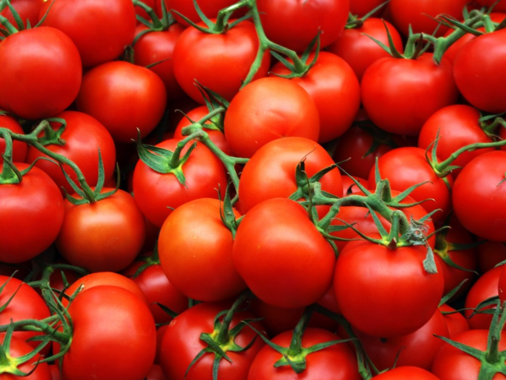 pomidory-wlasciwosci-1024x768